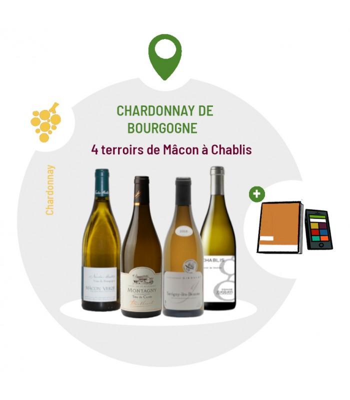 Coffret Dégustation cépage Chardonnay de Bourgogne - 4 vins blancs