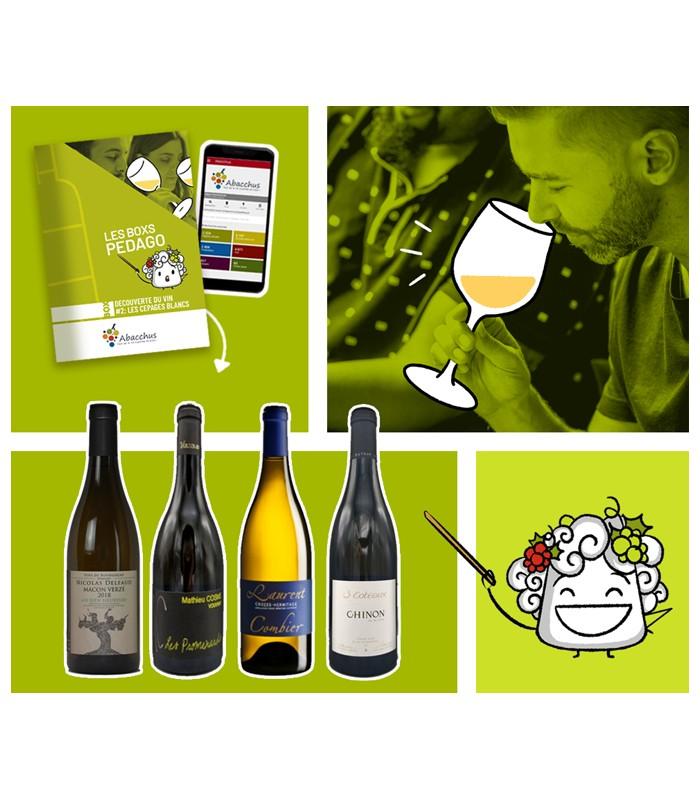 Cadeau box vin 'comprendre le vin'