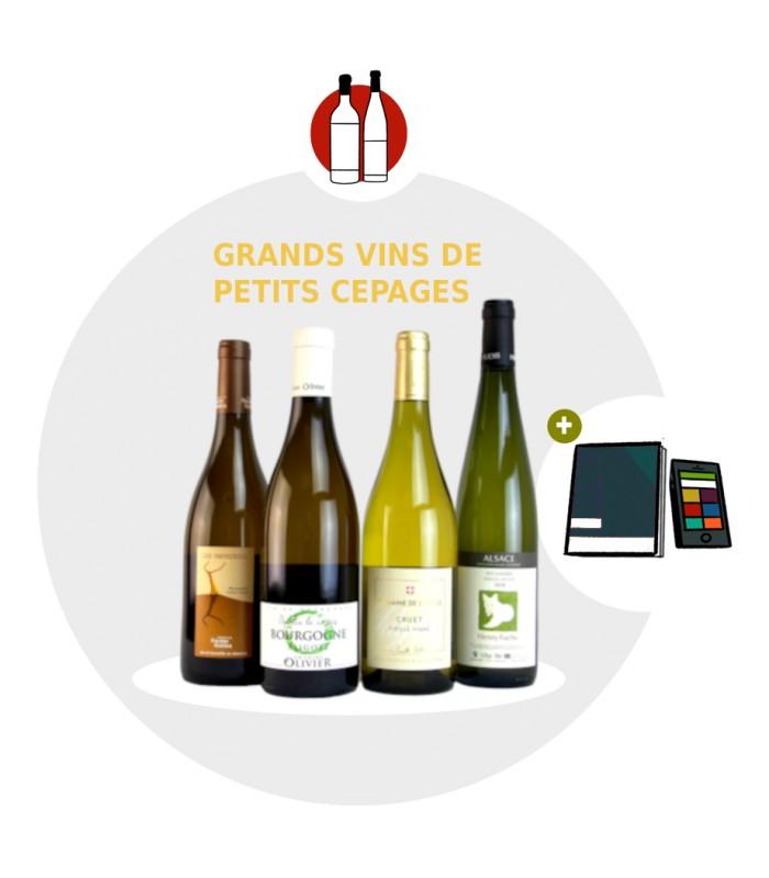 Coffret vin original - 4 grands vins de petits cépages