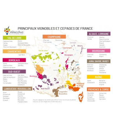 Mini set de table Principaux vignobles et cépages de France