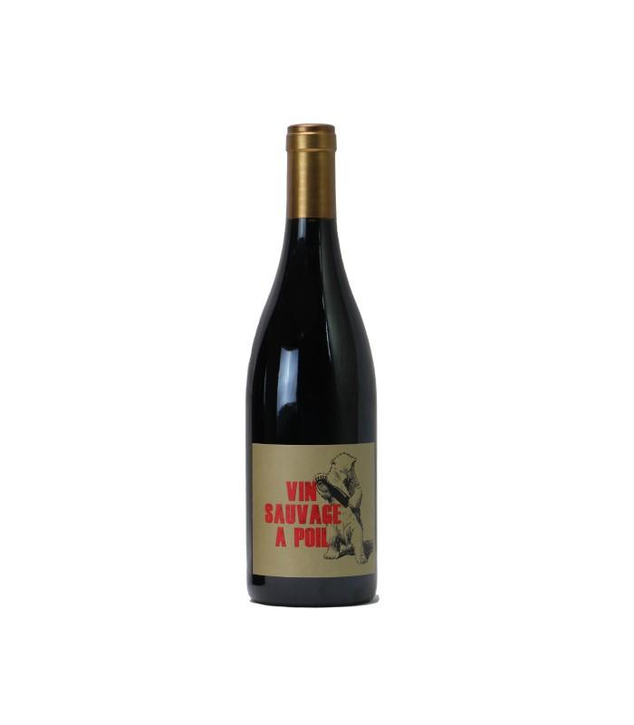 Bouteiille de Vin sauvage a poil du chateau de la Terriere