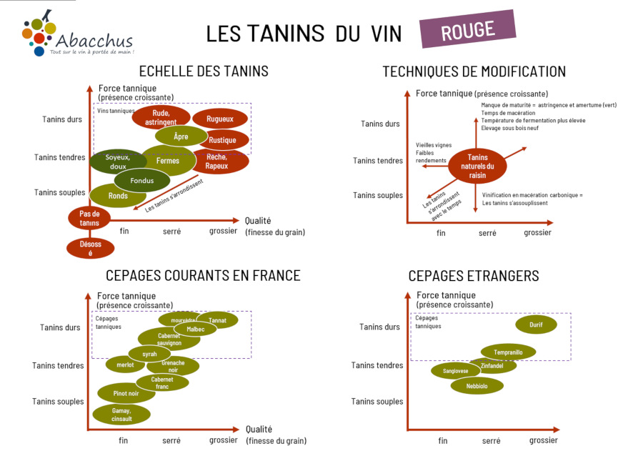 Aperçu de la carte plastifié pour les tanins des vins rouges