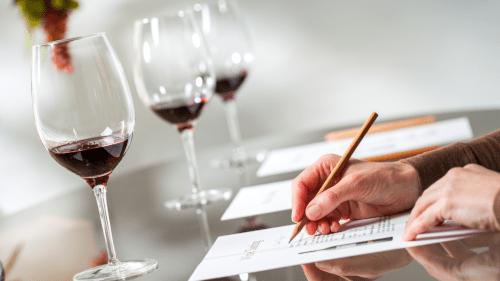 table avec verres de vins rouges et feuille pour degustation