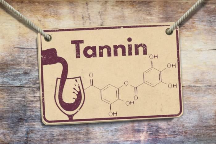 Presentation des tannins du vin