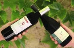 Box vin Battle Cabernets