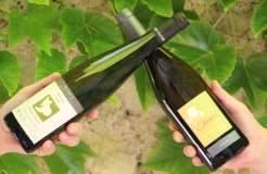 Box vin battle chenin vs riesling