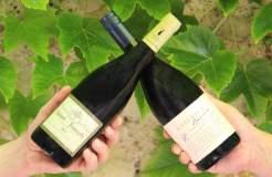 Box vin battle syrah-shiraz
