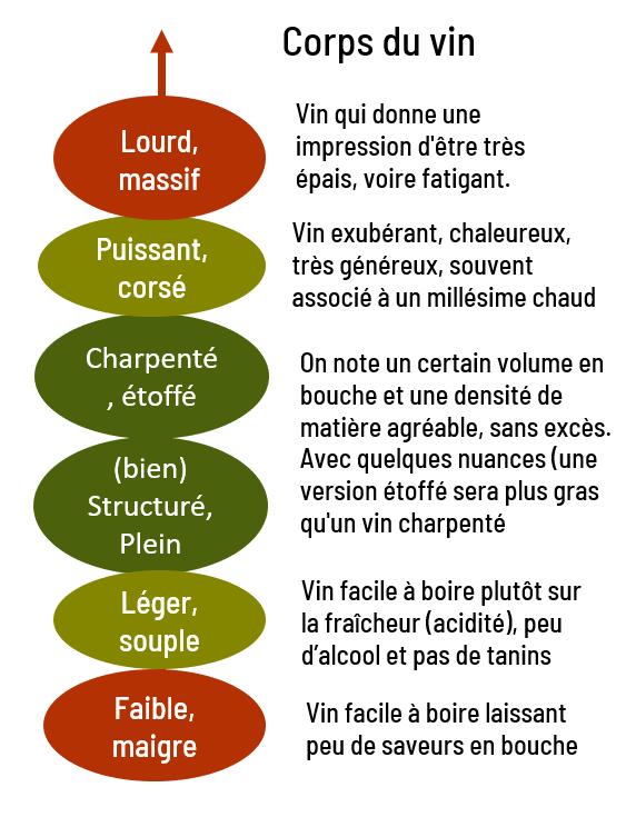 echelle de la structure des vins
