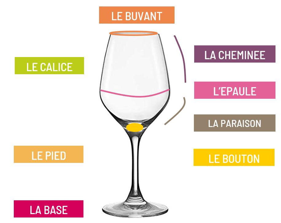 noms des differentes parties du verre a vin