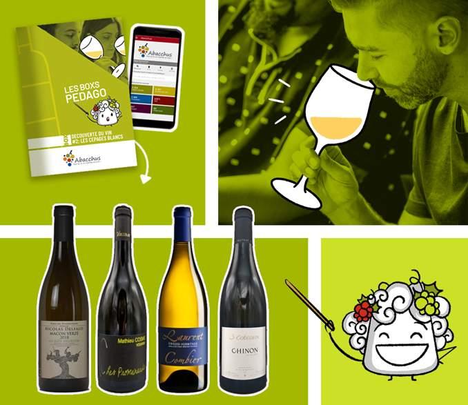 Box mensuelle Comprendre le Vin