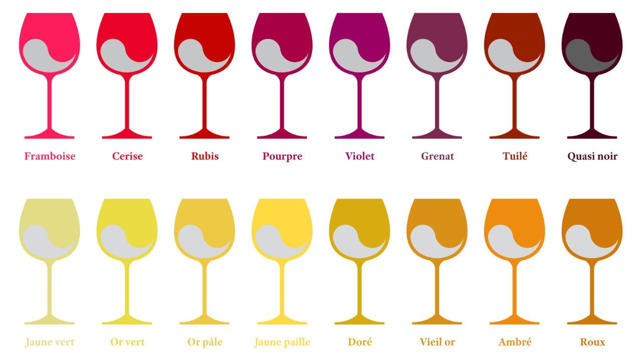 palette de couleurs du vin